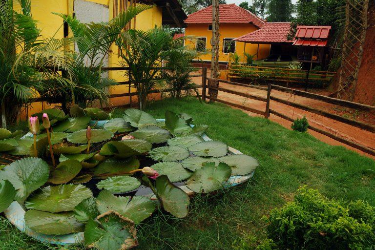 neverland-garden
